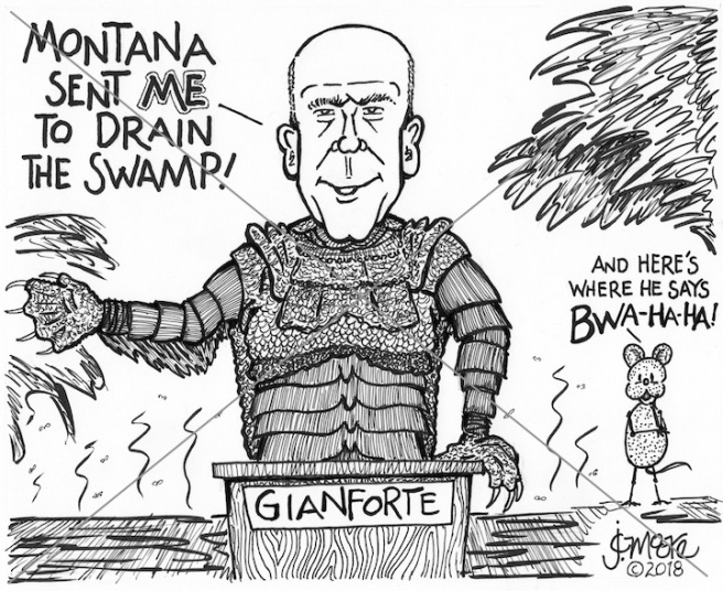 Gianforte swamp.jpg